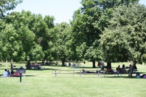 Picnic Area at Willow River State Park