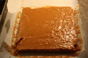 Once firm, remove mixture from baking pan and cut into 1 inch squares.